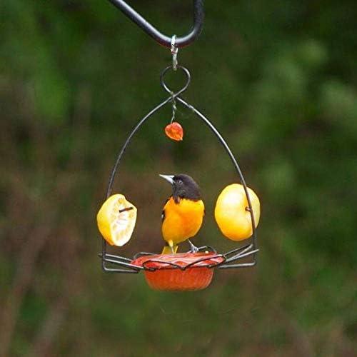 Bird Feeder or Garden Ornament Brown Metal Coffee Tea Pot Spike NEW