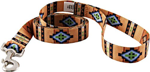 country-brook-designa-1-inch-native-southwestern-leash-2-feet