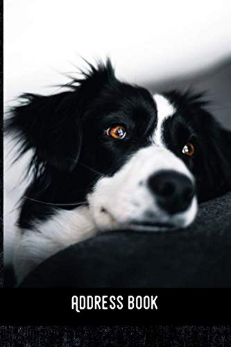 Address Book: Border Collie - Phone & contact book -All contacts at a glance - 120 pages in alphabetical order / size 6x9  (A5)