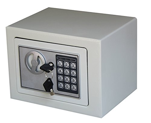 Royal Brands Square Electronic Gun Safe Money Jewelry Passport Home Hotel Office (White) ()