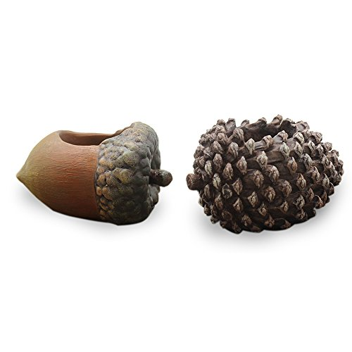 MyLifeUNIT Resin Succulent Pots, Pine cone and Hazelnut Shape Flower Pot for Cactus and Succulent Plants, Pack of 2 (Pinecone Pot)