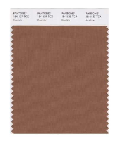 Amazon com: PANTONE SMART 18-1137X Color Swatch Card, Rawhide by