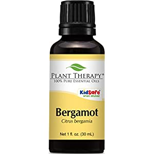 Plant Therapy Bergamot Essential Oil 30 mL (1 oz) 100% Pure, Undiluted, Therapeutic Grade