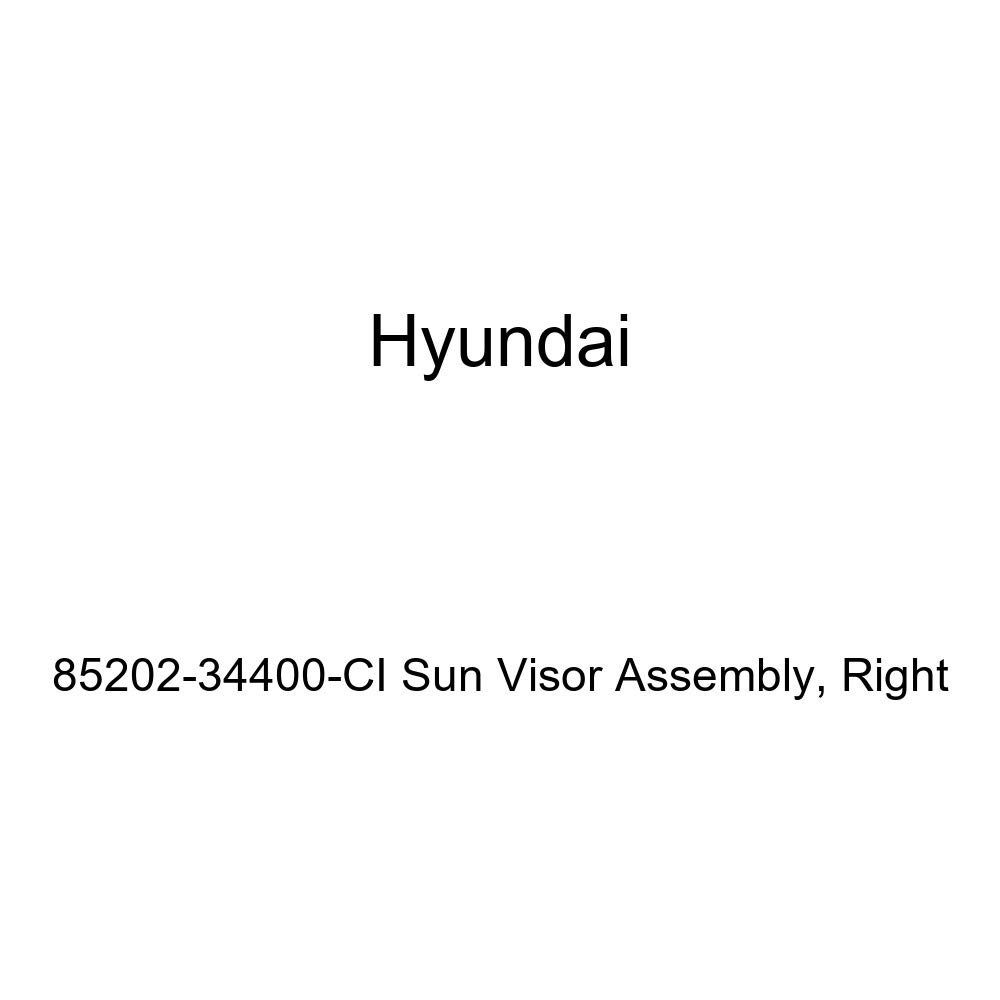 Genuine Hyundai 85202-34400-CI Sun Visor Assembly Right