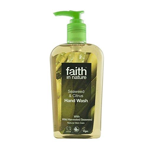 Faith In Nature Seaweed Handwash 300ml (Pack of 6) - 自然海藻手洗いの300ミリリットルの信仰 (x6) [並行輸入品] B01N43QWUX