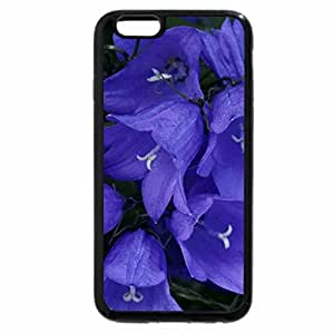 iPhone 6S / iPhone 6 Case (Black) Blue bell flowers