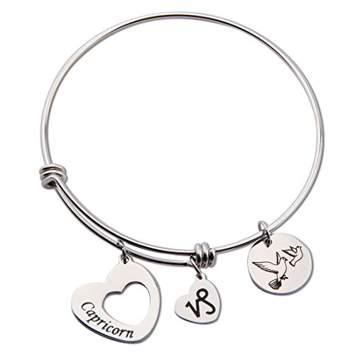 Maofaed Stainless Steel Zodiac Sign Constellation bracelet for Women Girl Gifts (Capricorn)