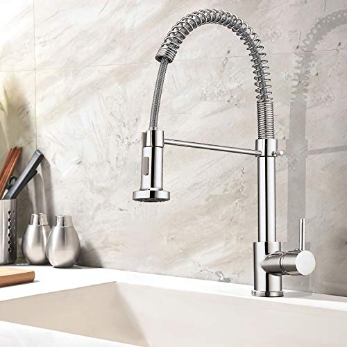 sncfoo Kitchen Sink Faucet-Modern Commercial Kitchen Faucet Single Handle Mixer Spiral Spring With Pull Down Dual Function Sprayer Bar Kitchen Faucet Size: 20x10x7In