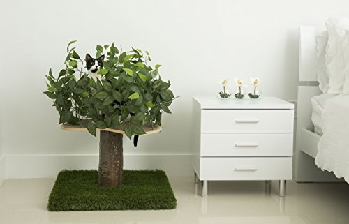 Cat Condo That Looks Like A Tree