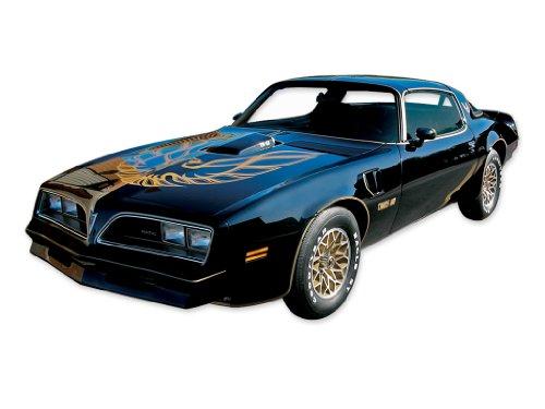 1976 1977 1978 Pontiac Firebird Trans Am Special Edition Bandit Decals & Stripes Kit - GOLD