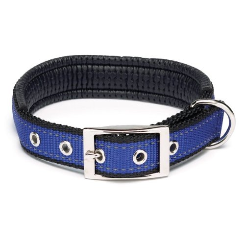 Zack and Zoey Polyester Reflective Cushion Dog Collar, 26-30-Inch, Blue, My Pet Supplies