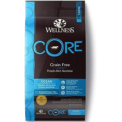 Wellness Core Natural Grain Free Dry Dog Food Oceanfish