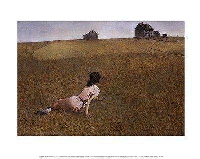 Andrew Wyeth Christina's World Art Print Poster - 14x11