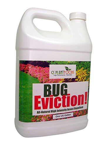 Bug Eviction! All Natural High Intensity Insect Repellent On