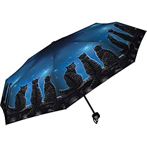 Wish Upon a Star Lisa Parker Umbrella