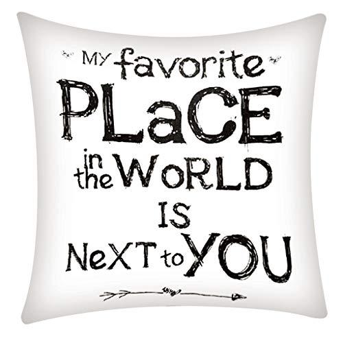 QBQCBB Pillow Case Polyester Fiber Cushion Sofa Car Cushion Cover Home Decoration 45x45cm(C)