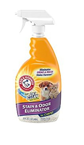 Arm Hammer Stain Eliminator Ounce product image