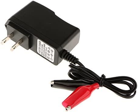 Sharplace Cargador 6V 500mA para Batería Acid Acumulador de Tipo Pinza con Indicador LED Luz