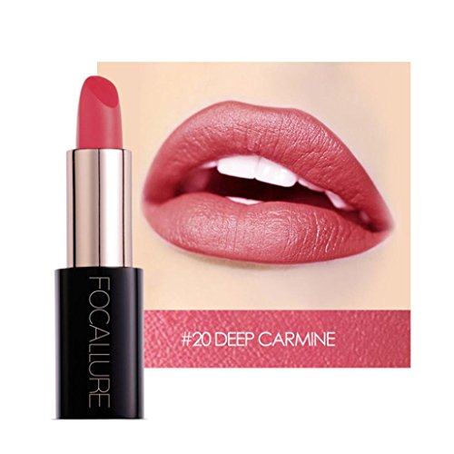 YOYORI Women Lipstick,20 Colors Optional Ladies Beauty Lip Long-lasting Velvet Matte Lipstick Waterproof Lip Gloss Makeup Girls Sexy Charming Long-lasting Non-fading Makeup Best Gift On Your Lips (T)
