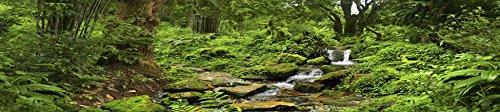 Terrarium Foam - Carolina Custom Cages Reptile Habitat Background; Rain Forest with Stream, for 36Lx18Wx18H Terrarium, 3-sided Wraparound