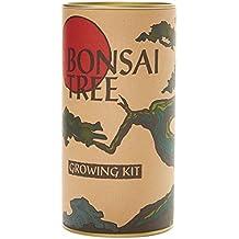 Bonsai Tree (Flowering Japanese Cherry Blossom) | Seed Grow Kit | The Jonsteen Company