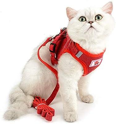 SELMAI Arnés de Malla para Gatos Perros Pequeños No Tirar No ...