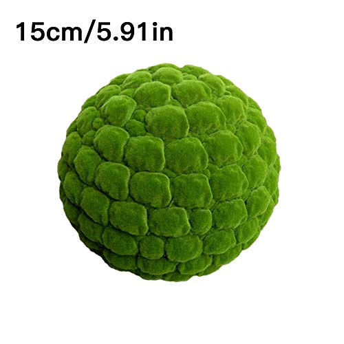 S WIDEN ELECTRIC Marimo Moss Balls Decorative, Simulation Plant for Mall Window Gardens Decor Indoor/Outdoor, Holiday and Other Special Event Decoration from S WIDEN ELECTRIC