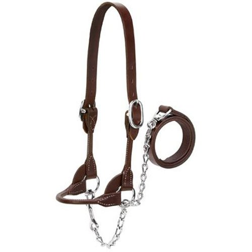 /Beef Rounded Show Halter, Brown, Medium (Brown Halter)