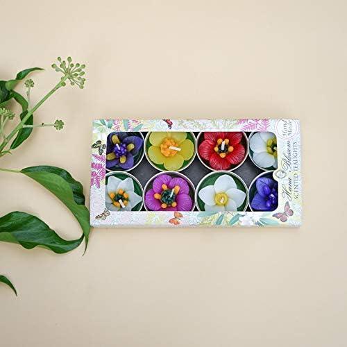 Hana Blossom Assortiment de 8 Bougies Chauffe-Plat parfumées Faites à la Main