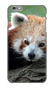 Cute High Quality Iphone 6 Plus Animal Red Panda Red Panda Case Provided By Dreaminghigh