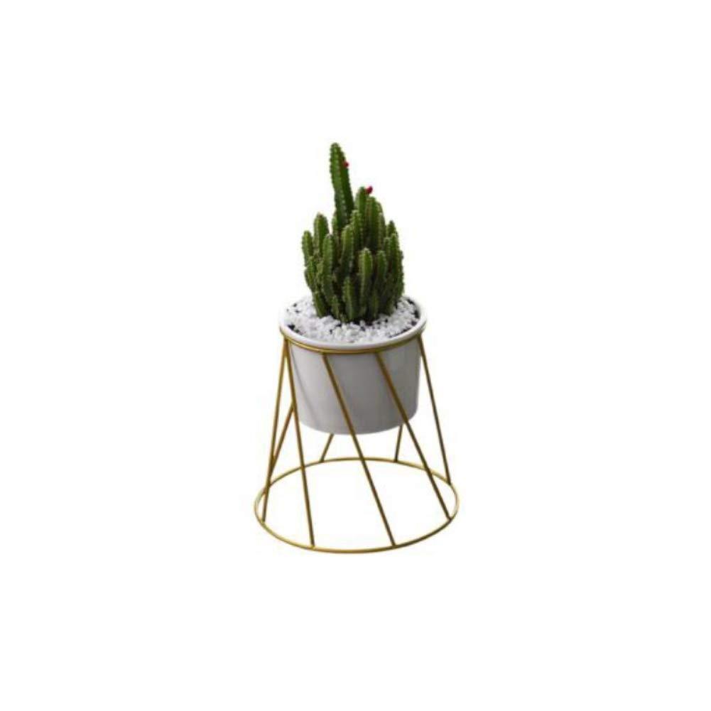 Blumentopf Keramik klein Eisen Blumenständer Wohnzimmer Dekoration Kleine Topfpflanze Gold