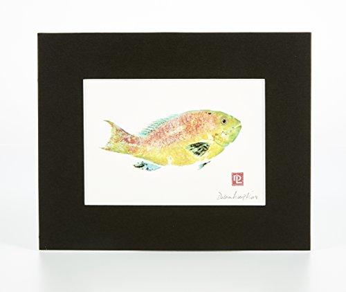 Matted Gyotaku Art Print: Uhu Parrotfish (8 x 10)