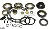 Chevy GM NP261, NP263 Transfer Case Bearing Kit BK371