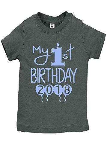 Reaxion Aiden's Corner - Baby Boy Clothes - Baby Boy My First Birthday Bodysuit (Shirt 18 Months, Shirt 2018 Lt Blue-Charcoal)
