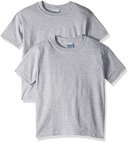 Gildan Kids' Big Ultra Cotton Youth T-Shirt, 2-Pack, Sport Grey X-Large ()