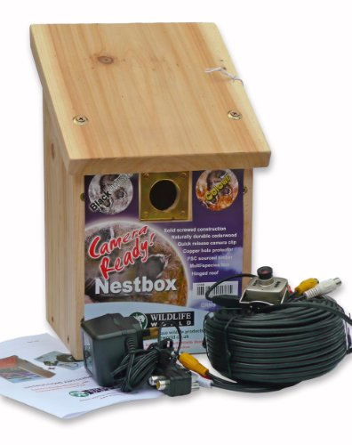 Wildlife World Camera-Ready Nestbox With Colour Only Camera Kit by Wildlife World Ltd