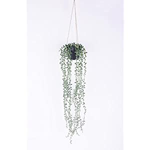 Dehomy Artificial Succulent Plants,Hanging String of Plant 48