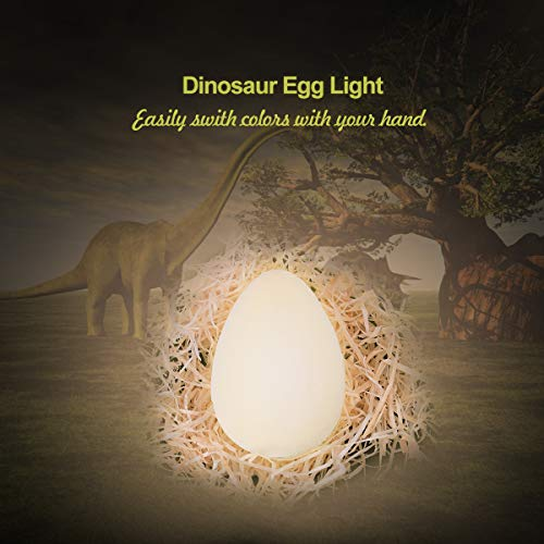 (3D Printing Egg Light, Glowing Dinosaur Egg Lamp Touch Control 3 Colors (Cool/Warm White and Yellow) Rechargeable Home Decorative LED Night Light, Decor Light for Kid Toys, Birthday Gift, Bedside,4