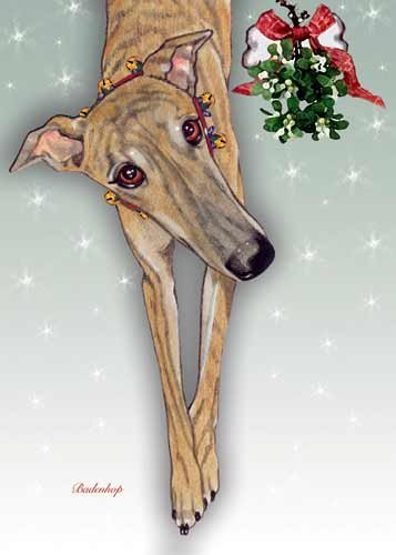 Greyhound Christmas Cards Brindle : 10 Holiday Cards with Envelopes ()