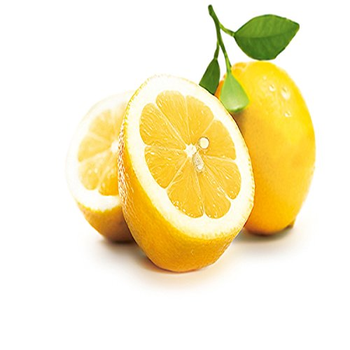 (LEMON FRESH FRAGRANCE OIL - 1 OZ - FOR CANDLE & SOAP MAKING BY VIRGINIA CANDLE SUPPLY - FREE S&H IN)