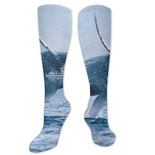(Socks Sea Whale Jumping Fantastic Womens Stocking Holiday Sock Clearance for Girls)