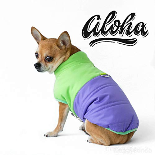 Chihuahua Dog Jacket Puffer Winter Teacup Dog Jacket Custom Made Chihuahua Coat Warm Dog Jacket Unisex Lime and Purple Jacket For all breed Dogs