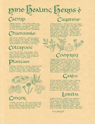 Nine Healing Herbs Parchment Poster