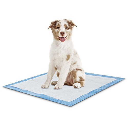 150 Count 28x34 Maximum Absorbent Potty Puppy Training Pads, WON`T LEAK OR (Maximum Absorbency Puppy Pads)