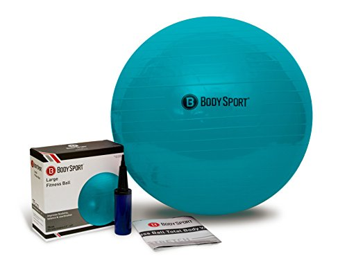 Body Sport Exercise Ball with Pump for Home, Gym, Balance, Stability, Pilates, Core Strength, Stretching, Yoga, Fitness Facilities, Desk Chairs – DiZiSports Store