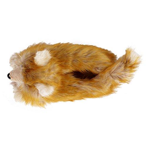 Pomeranian Slippers Pomeranian Slippers IU6xt1w5q5