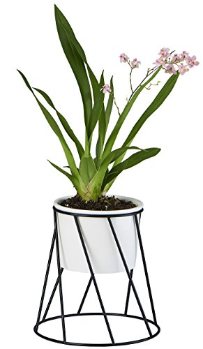 Planter Pot Indoor, Flowerplus 4.33 Inch White Ceramic Medium Succulent Cactus Flower Plant Round Bowl with Iron Rack Holder and Plants Sign for Indoors Outdoor Home Garden Kitchen Decor (Black)