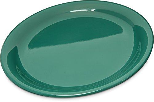 - Carlisle 4300409 Durus Narrow Rim Melamine Dinner Plate, 9