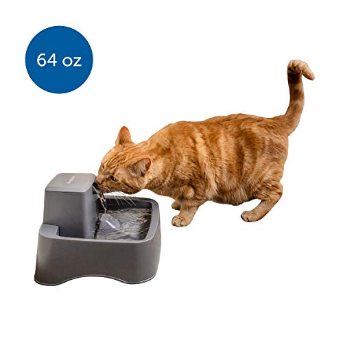 PetSafe Drinkwell Cat and