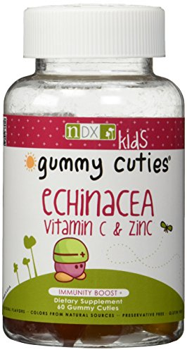 Natural Dynamix Echinacea Vitamin C and Zinc Mineral Supplement, 60 Count - Kid Vits Multiple Vitamin